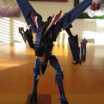Thundercracker - Back Detail