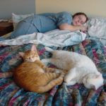Jessica sleeps alongside her kitties, Cheetoe and Olly. (1/20/2002)