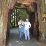 Jessica and Andrew pose inside a drive through tree near the Redwoods. (7/8/2010)